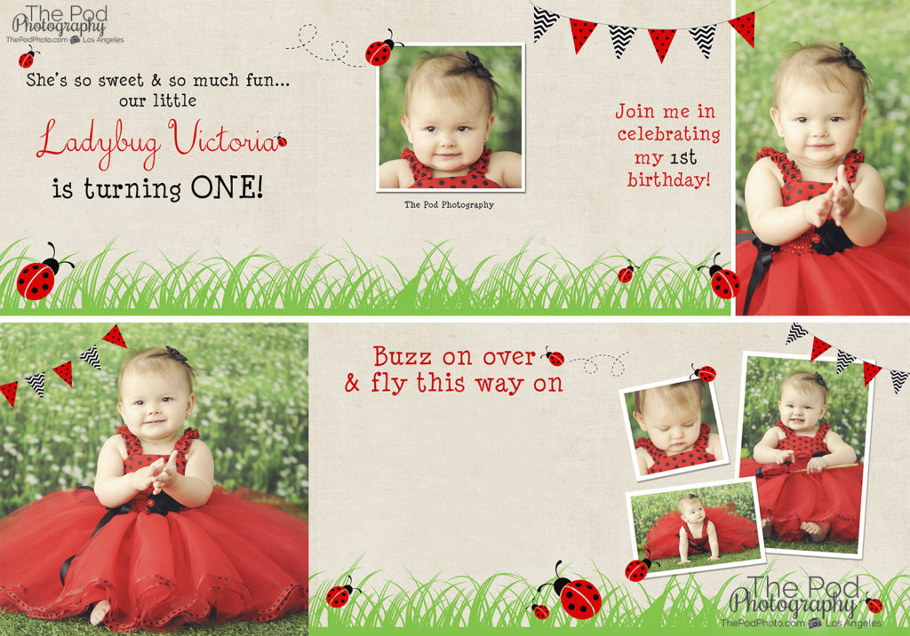 First_Birthday_Ladybug_Invitation_Los_Angeles