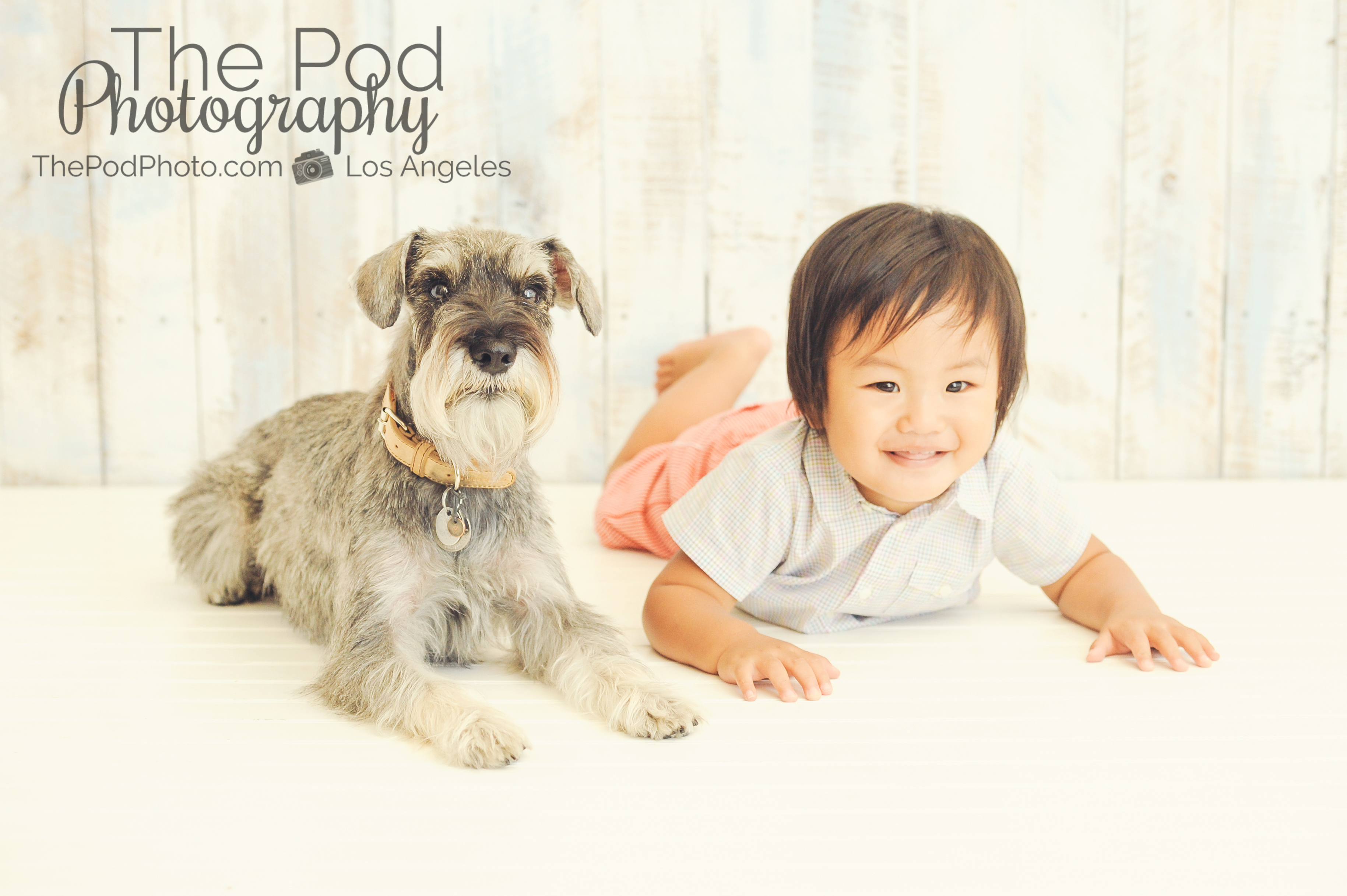 One year old baby boy with dog photo in studio culver city