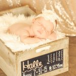sparkle-newborn-blush-backdrop