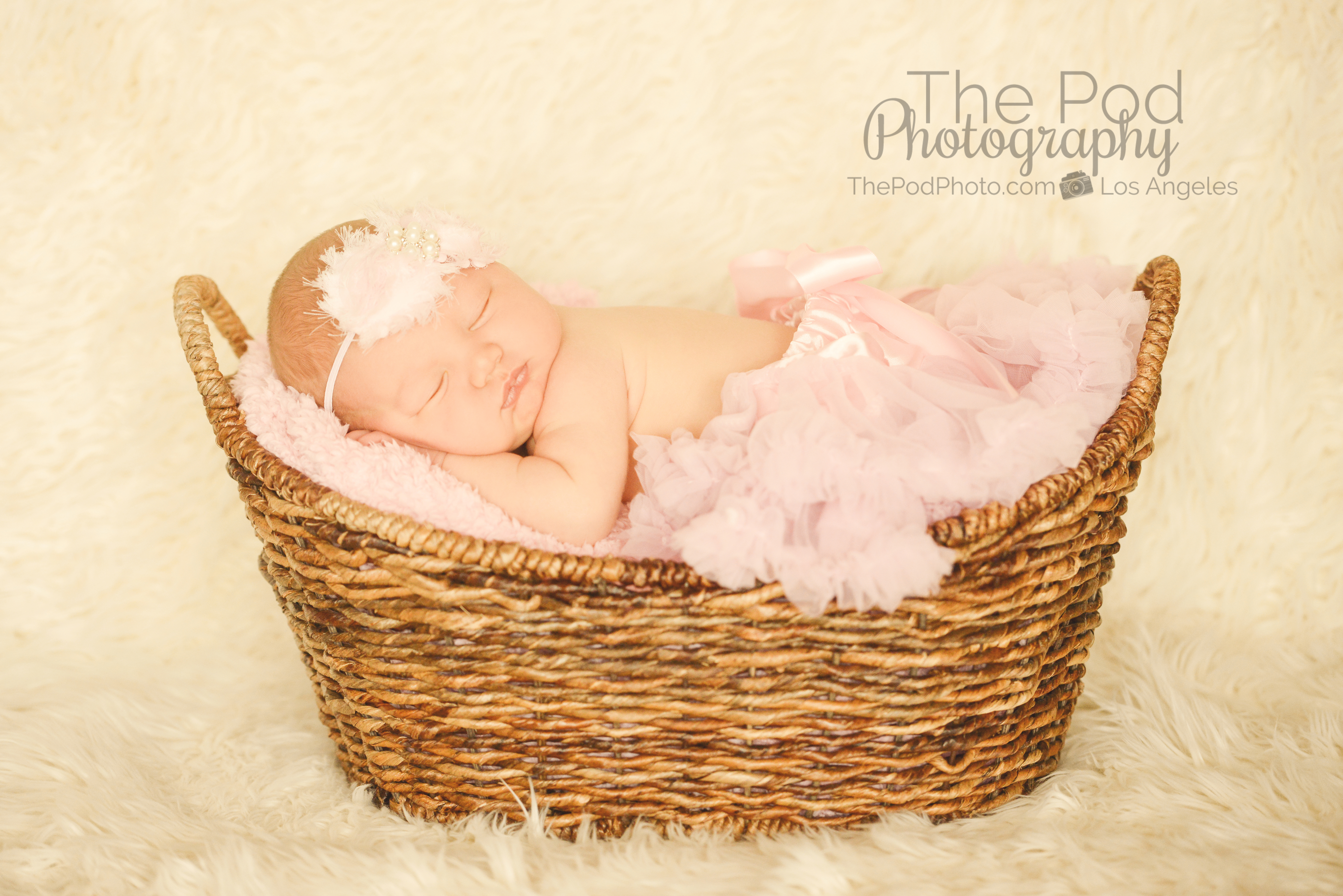 Baby in basket with pink tutu girly newborn photography west los angeles