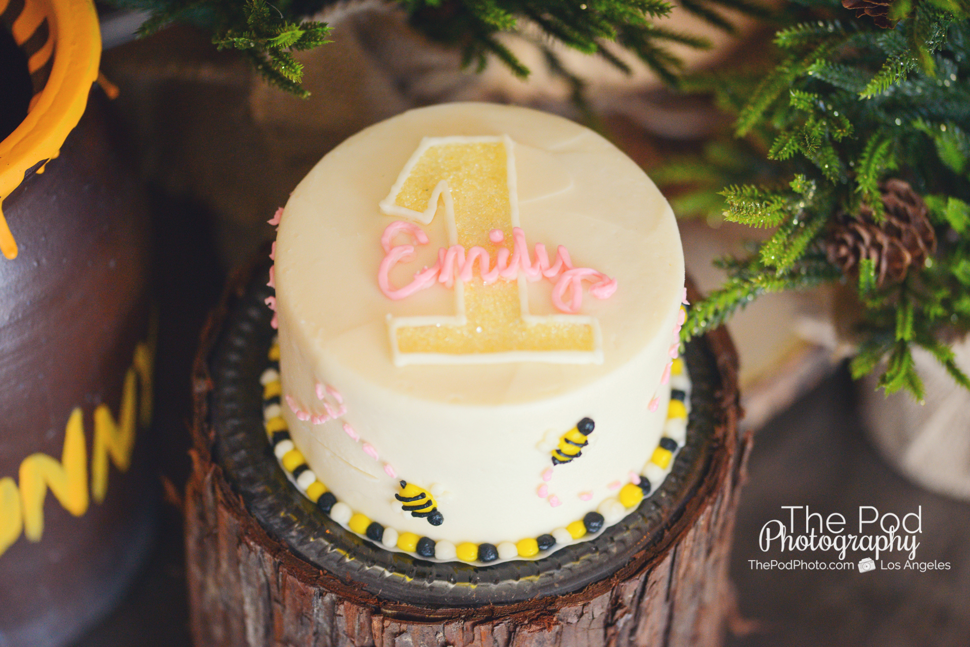 Susiecakes Cake Smash Winnie The Pooh Rustic First Birthday Photographer Los Angeles Pod Photography