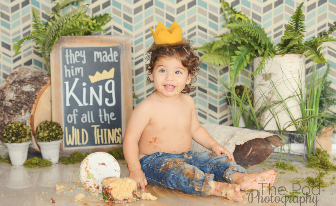 Where-The-Wild-Things-Are-First-Birthday-Cake-Smash-Los-Angeles