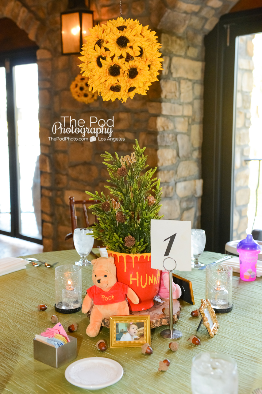 Winnie The Pooh First Birthday Party Decorations  from blog.thepodphoto.com