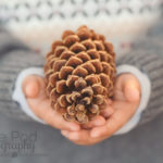 Detail-Portraits-Pinecone-Kids-Hands