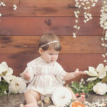 sherman-oaks-first-birthday-photography (13)