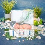baby-shark-baby-photo-set
